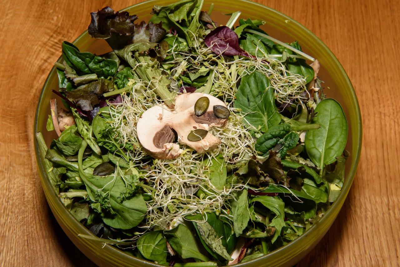 Blattsalat mit Stangensellerie